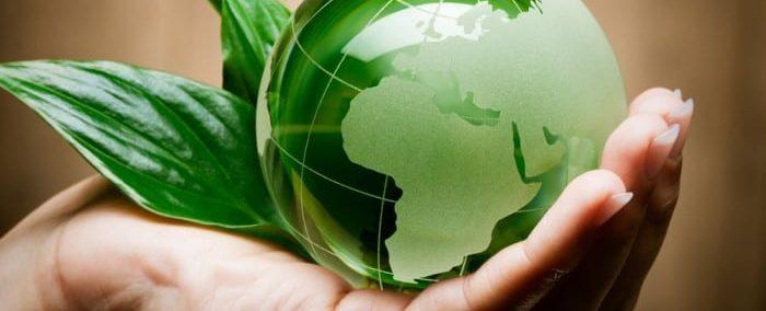 Кафедра экологии, природопользования и экологической инженерии